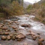 Наволи-сай – форельная речка