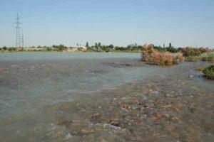 Река Чирчик. Среднее течение.