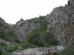 Коксуйский хребет